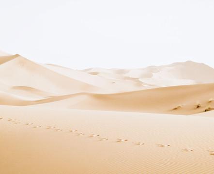 Dubai Dunes for amazing excursions and adventures