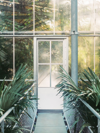 drivhuset i hagen
