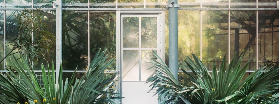 Visit a Conservatory