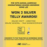 Updated - Telly Awards Post.jpg