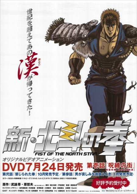 Original Vintage Fist of the North Star DVD Poster