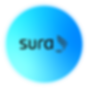 SURARecurso 2-8.png