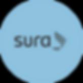 SuraRecurso 21-8.png