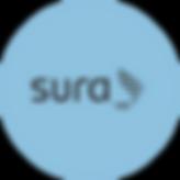 SURARecurso 4-8.png