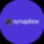 SynapRecurso 2-8.png