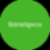 biointelligenza_op80.png