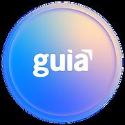 GuiaRecurso 11-8.png