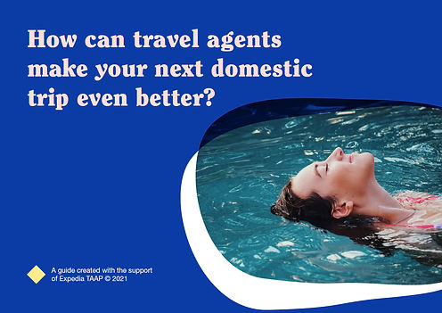 Why use a travel agent for domestic trav