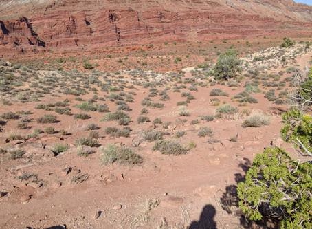 Moab/Aspen