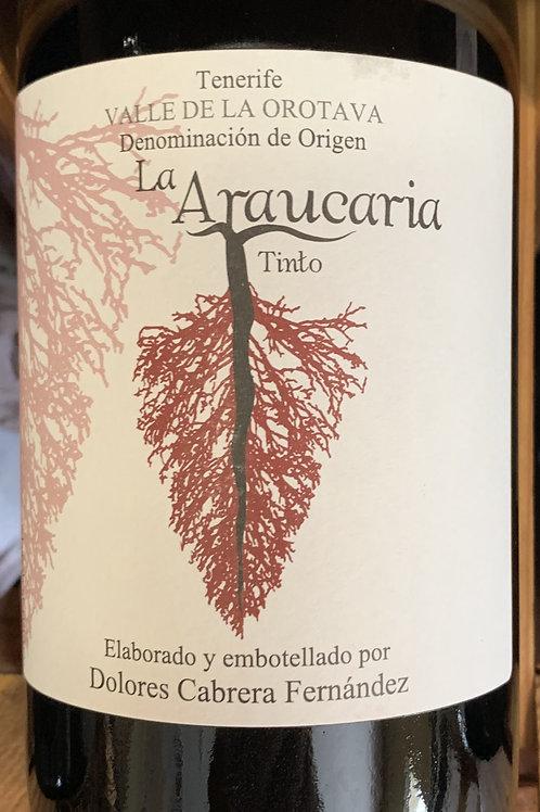 2017 La Araucaria, Listran Negro, Canary Isclands