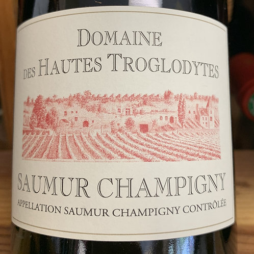 2017 Dom de Haute Troglodytes, Saumur Champigny