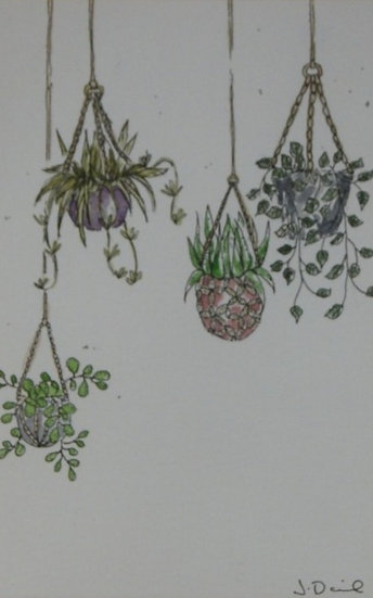 Hanging Baskets Original Watercolour Painting