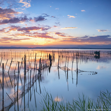 Sunset in L'Albufera Lake