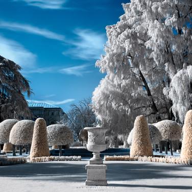 Jardín blanco