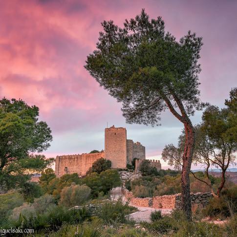 Santa Magdalena de Pulpis Castle