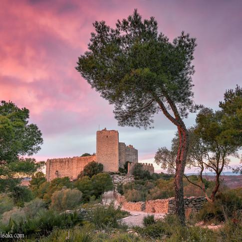 Castillo de Santa Magdalena de Pulpis