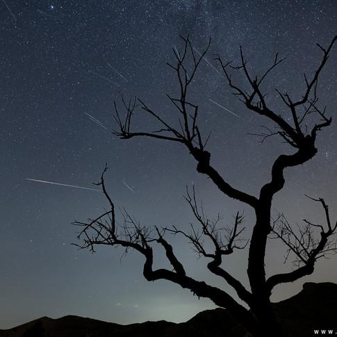 Lluvia de meteoros Las Perseidas
