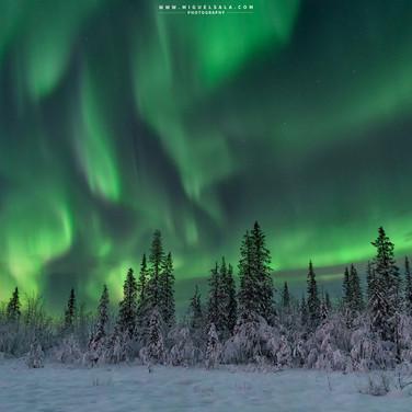 Northen lights in Kiruna (Sweden)