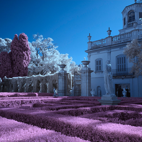 Jardín soñado