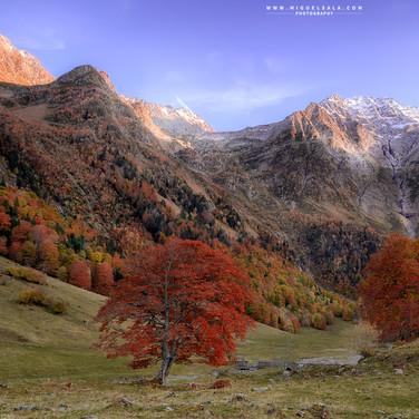 Autumn in Pyrenees