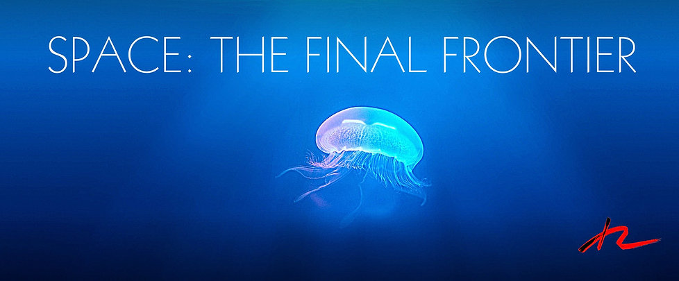 SPACE: THE FINAL FRONTIER is the headline on this billboard of an under water shot of a luminiscent jelly fish against a dark blue ocean