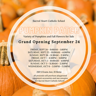 pumpkin patch.png