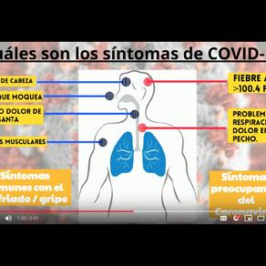 Lo que sabemos sobre el coronavirus (COVID-19)