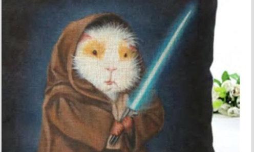 Cojín Cuy Jedi