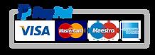 paypal-logo 1.png