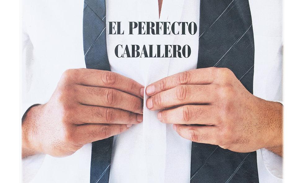 """LIBRO """"EL PERFECTO CABALLERO"""""""