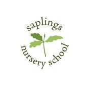 Saplings Nursery School