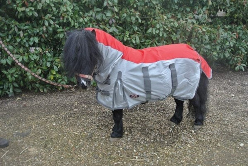 The Shetland Miniature Donkey Sec A Combo Fly Rug With Waterproof Panel Is Useful In Warm Weather And Particularly If Showery As Offers
