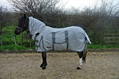 The Shetland Miniature Donkey Section A Combo Fly Rug With Belly Band Is Fantastic Made From Soft But Strong Mesh Which Does Not Snag As Easy