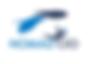 Nomad CIO logo