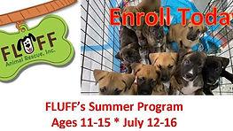 Fluff Summer Program
