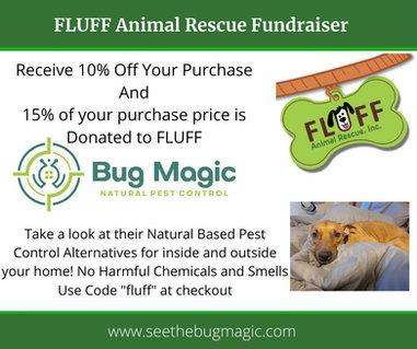 Bug Magic