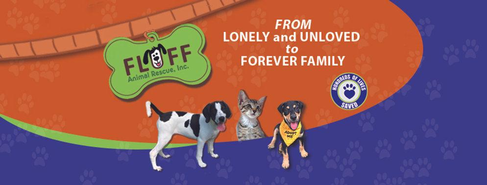 Fluff FB Cover.jpg