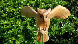 Close-up wooden owl