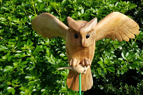Owl with mouse in claws, Top Quality