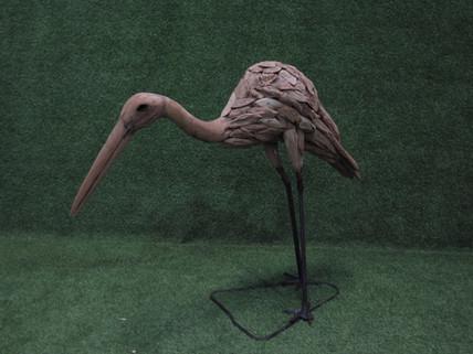 Flamingo bowing