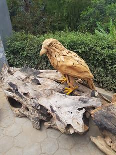 Wooden Crow