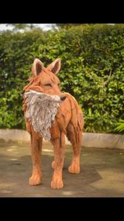 Fox painted