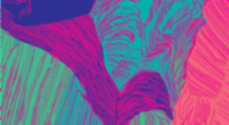 Estuary-Hibiscus.png