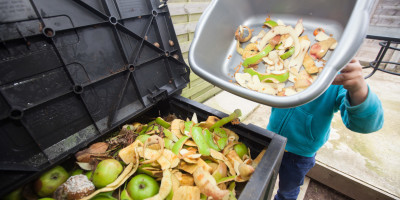 food waste bin fruit peelings