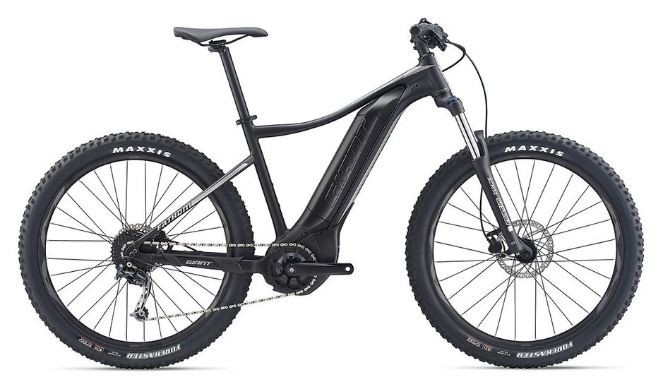 Rent a Hardtail E-bike