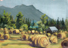 Hay-bails from Edgewood Road
