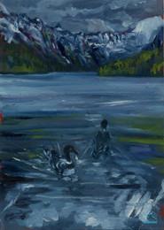 Loons on Bowman Lake