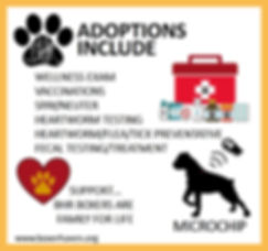 adoption includes.jpg