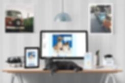 lennar, Ellie Platt, email design, pet adoption, email