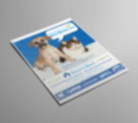 lennar, Ellie Platt, flyer design, pet adoption, flyer